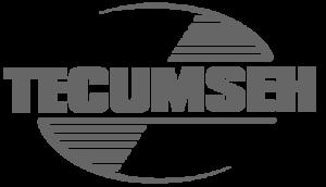 Tecumseh Motoren